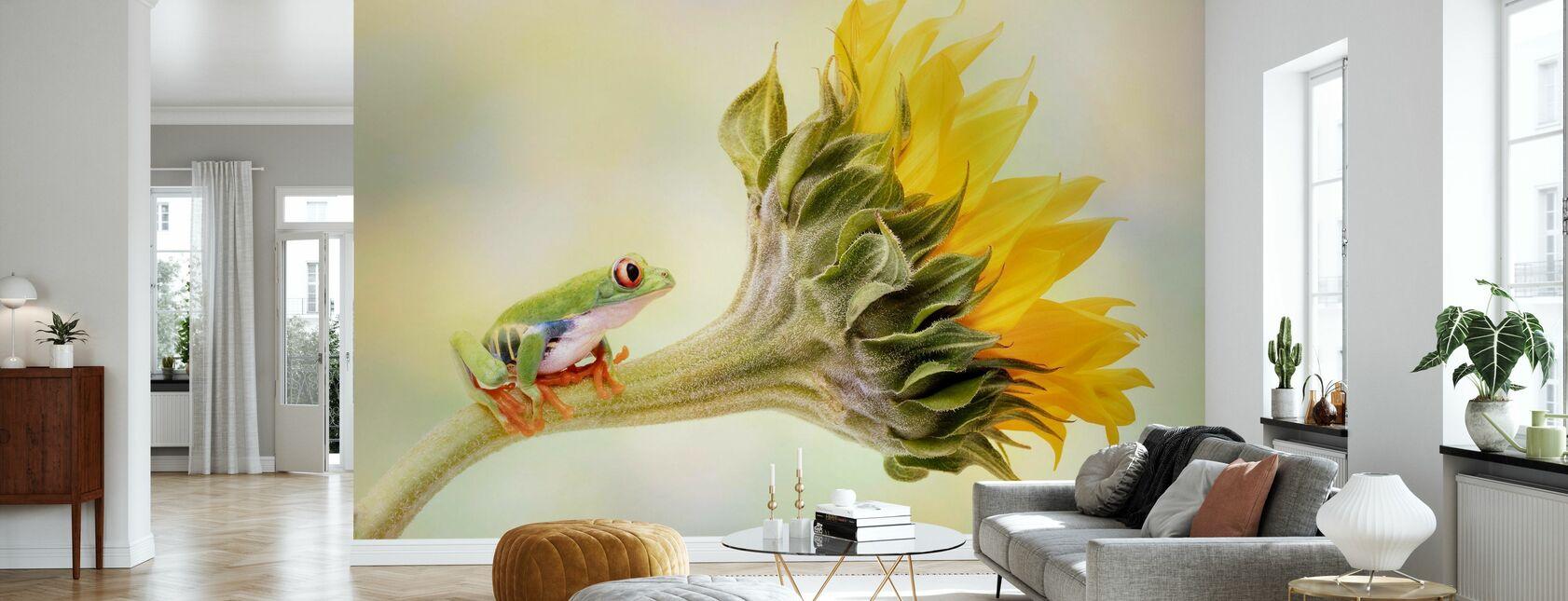 Grenouille d'arbre sur un tournesol - Papier peint - Salle à manger