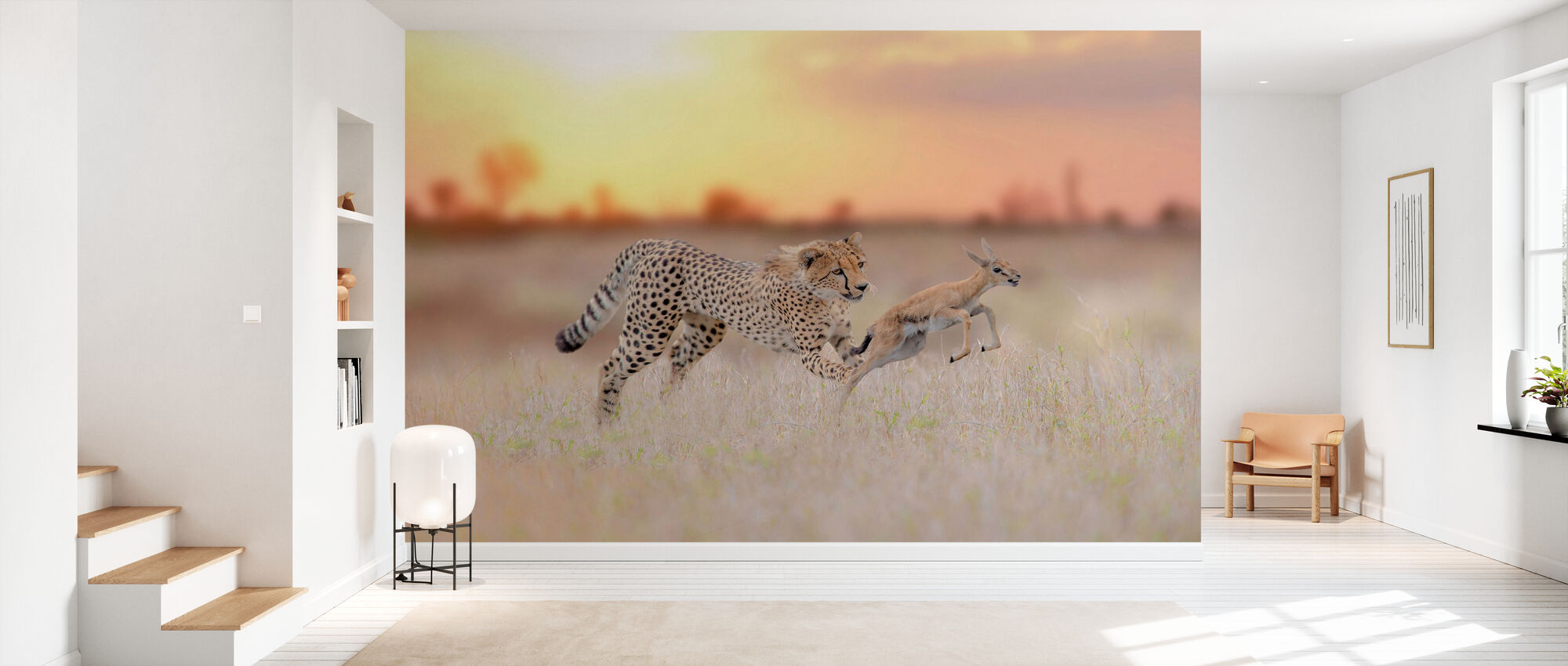 Cheetah Hunting a Gazelle - Wallpaper - Hallway