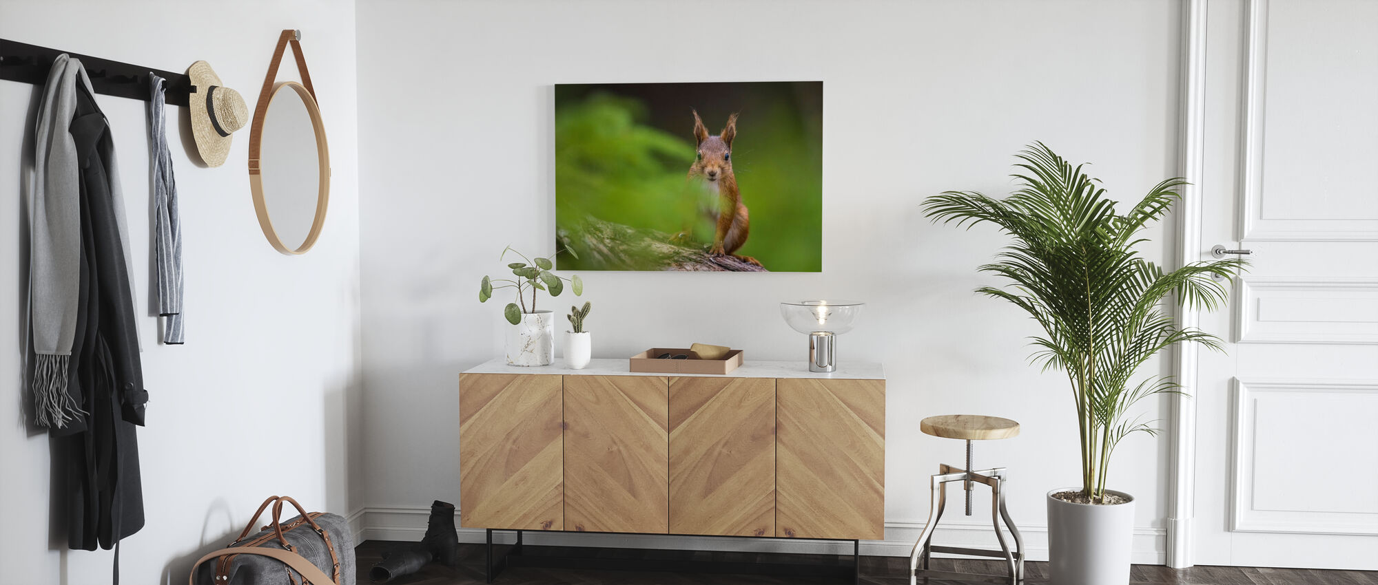 Squirrel II - Canvas print - Hallway