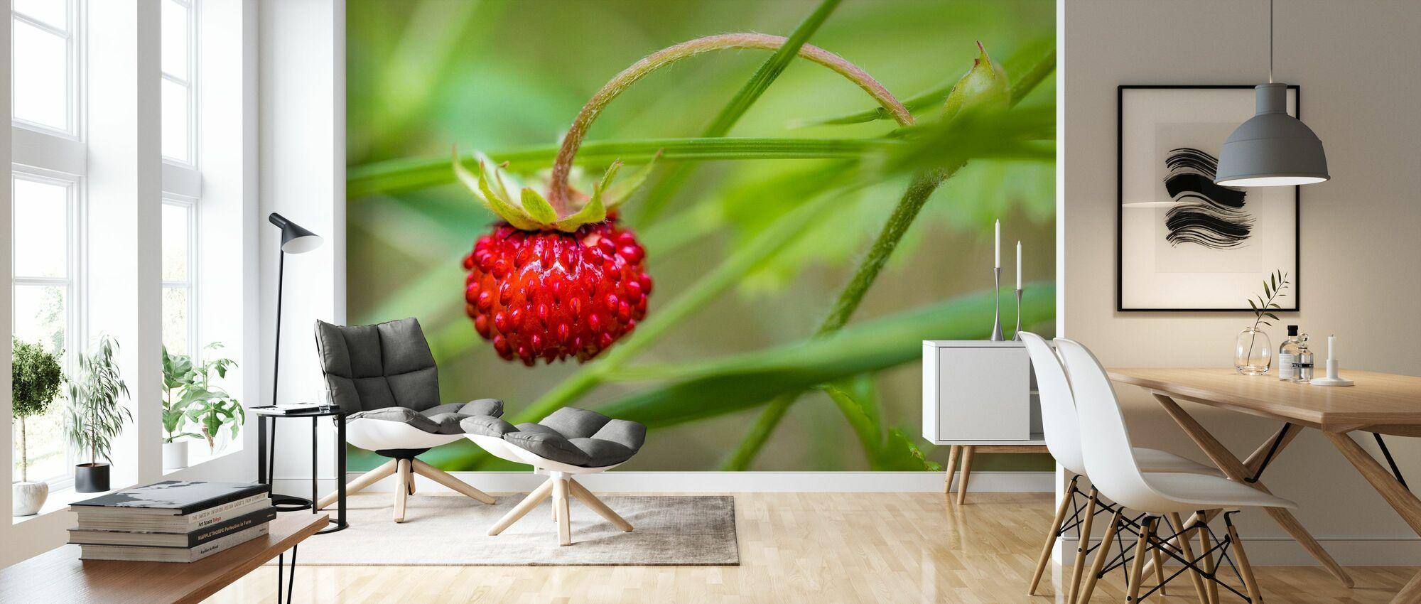 Schöner kleiner Fleck - Tapete - Wohnzimmer