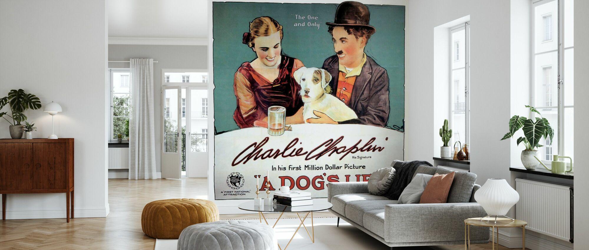Dogs Life - Infographics - Wallpaper - Living Room