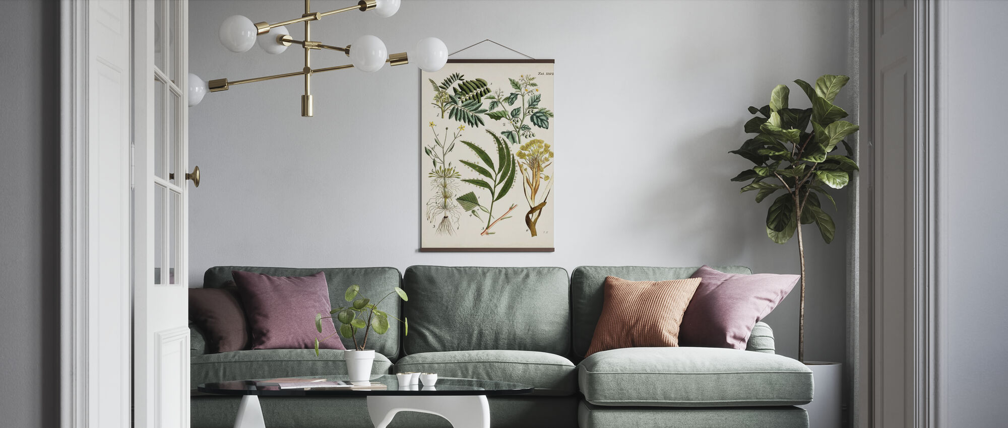 Fanciful Ferns - Poster - Living Room