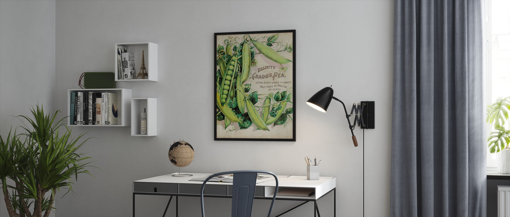 Antique Seed Packets III - Poster - Office