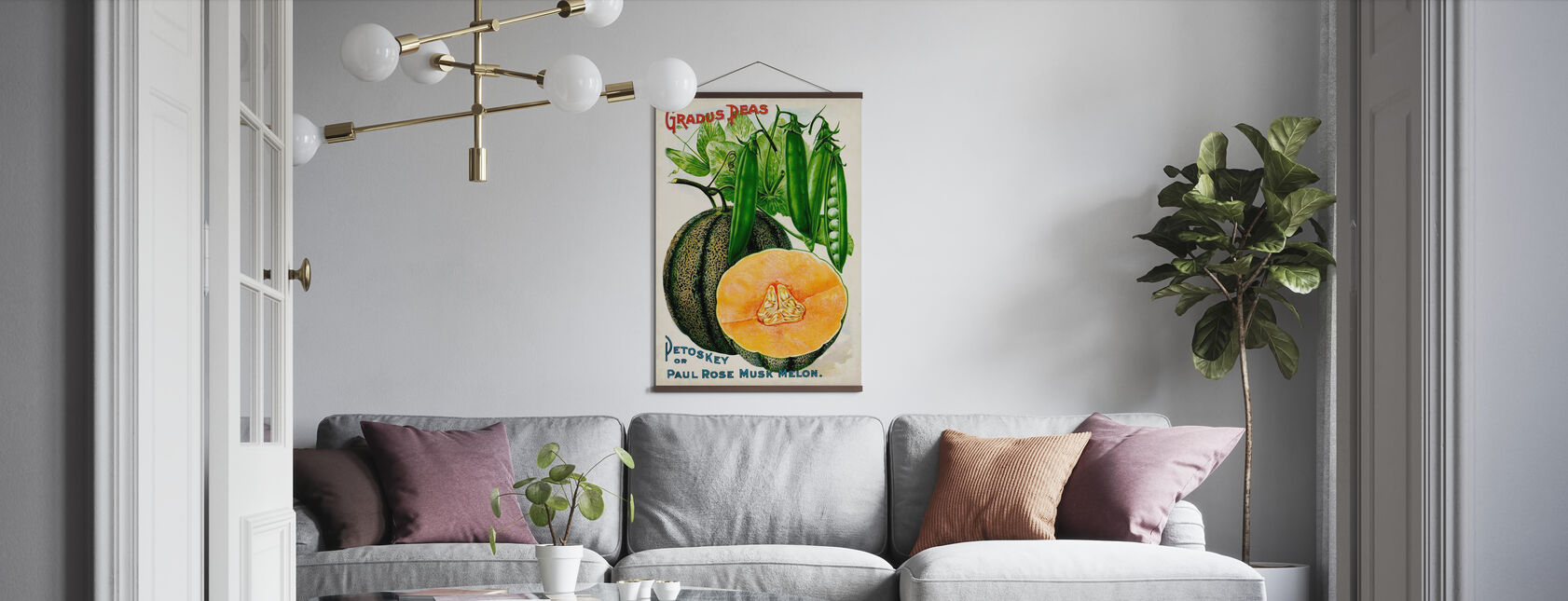 Antieke Zaad Pakketten V - Poster - Woonkamer