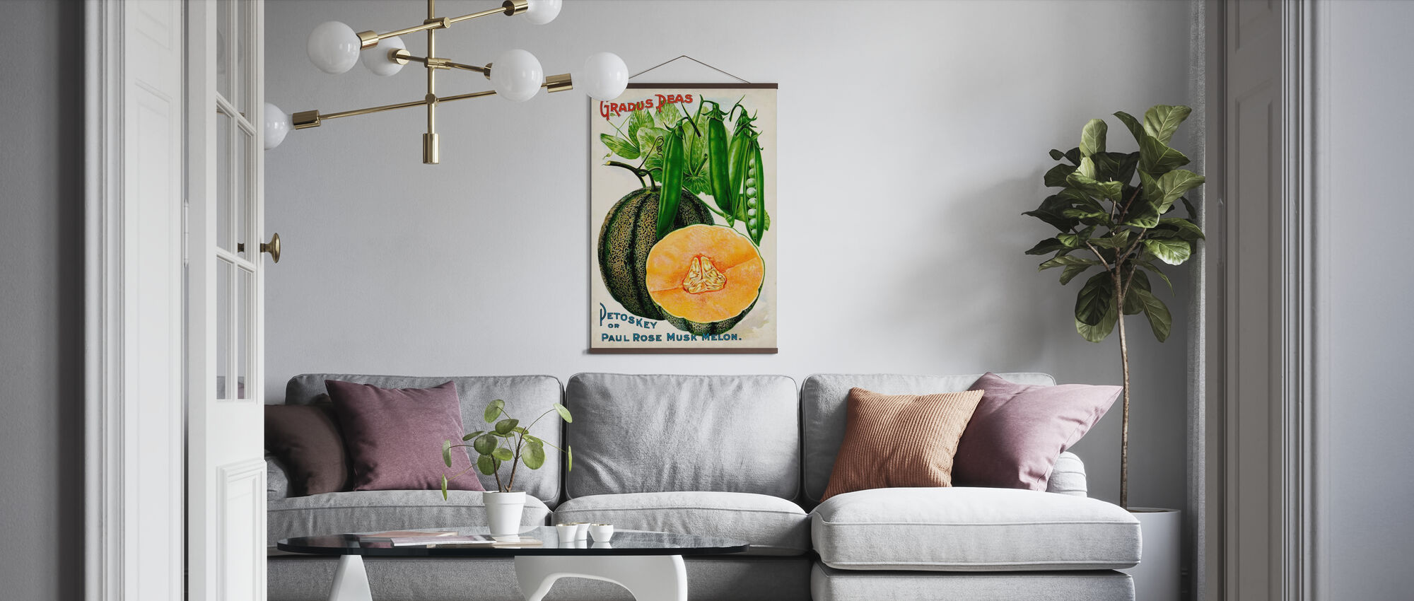 Antique Seed Packets V - Poster - Living Room