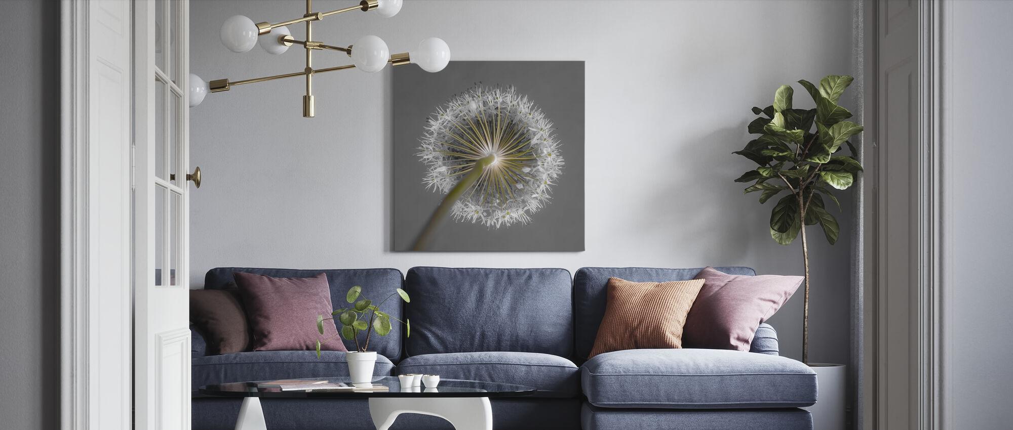 Allium Flower - Canvas print - Living Room