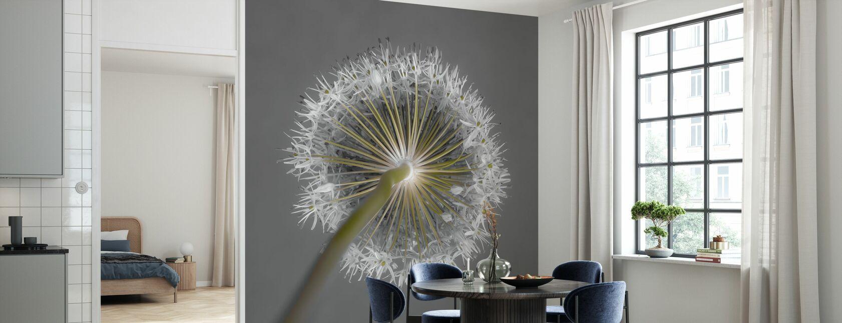 Allium Flower - Wallpaper - Kitchen