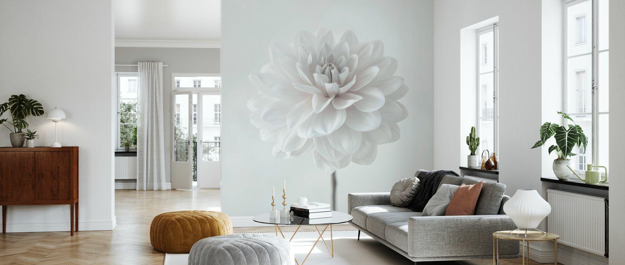 Dahlias - Wallpaper - Living Room