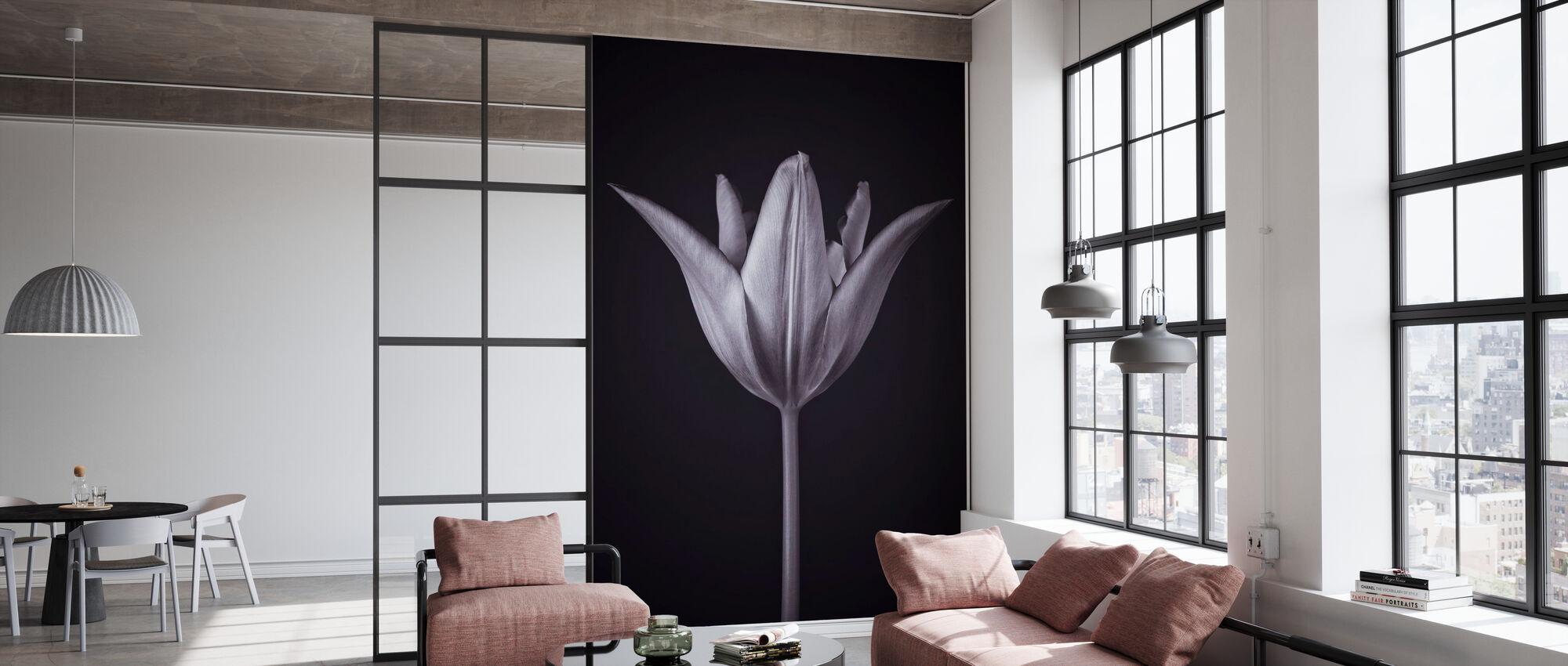 Single Tulip - Wallpaper - Office