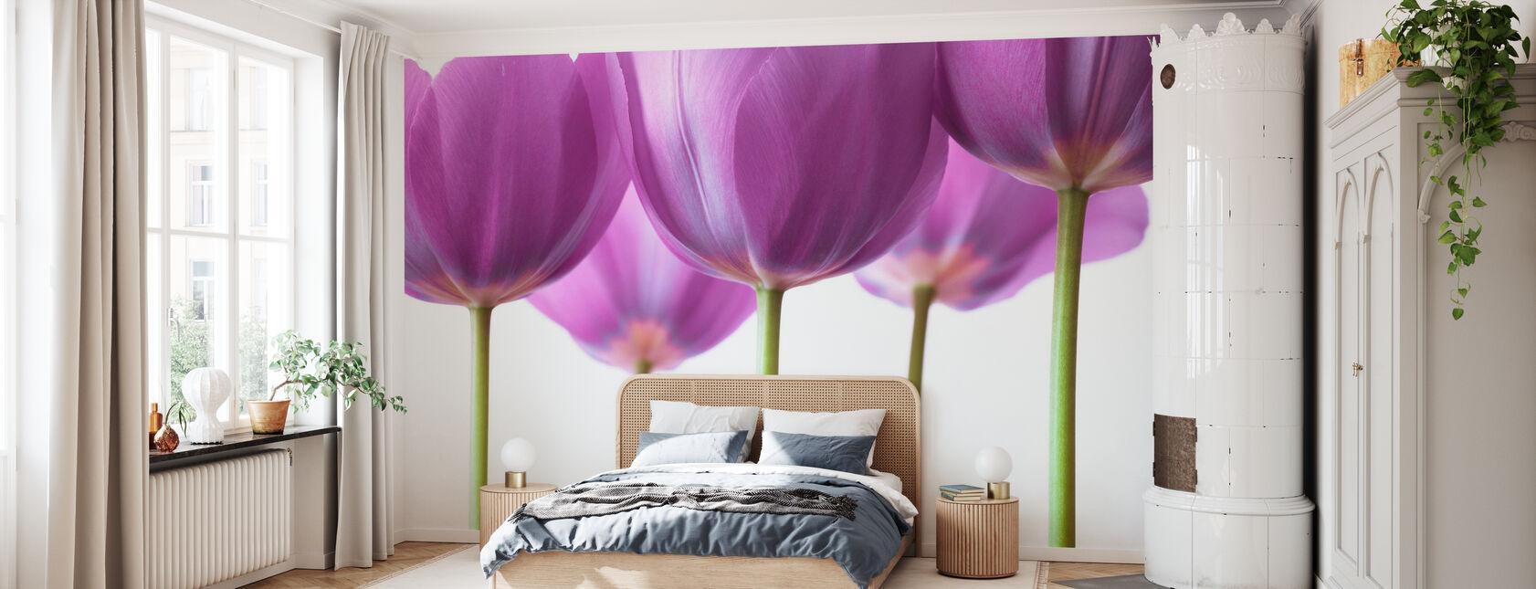Tulipanes - Papel pintado - Dormitorio