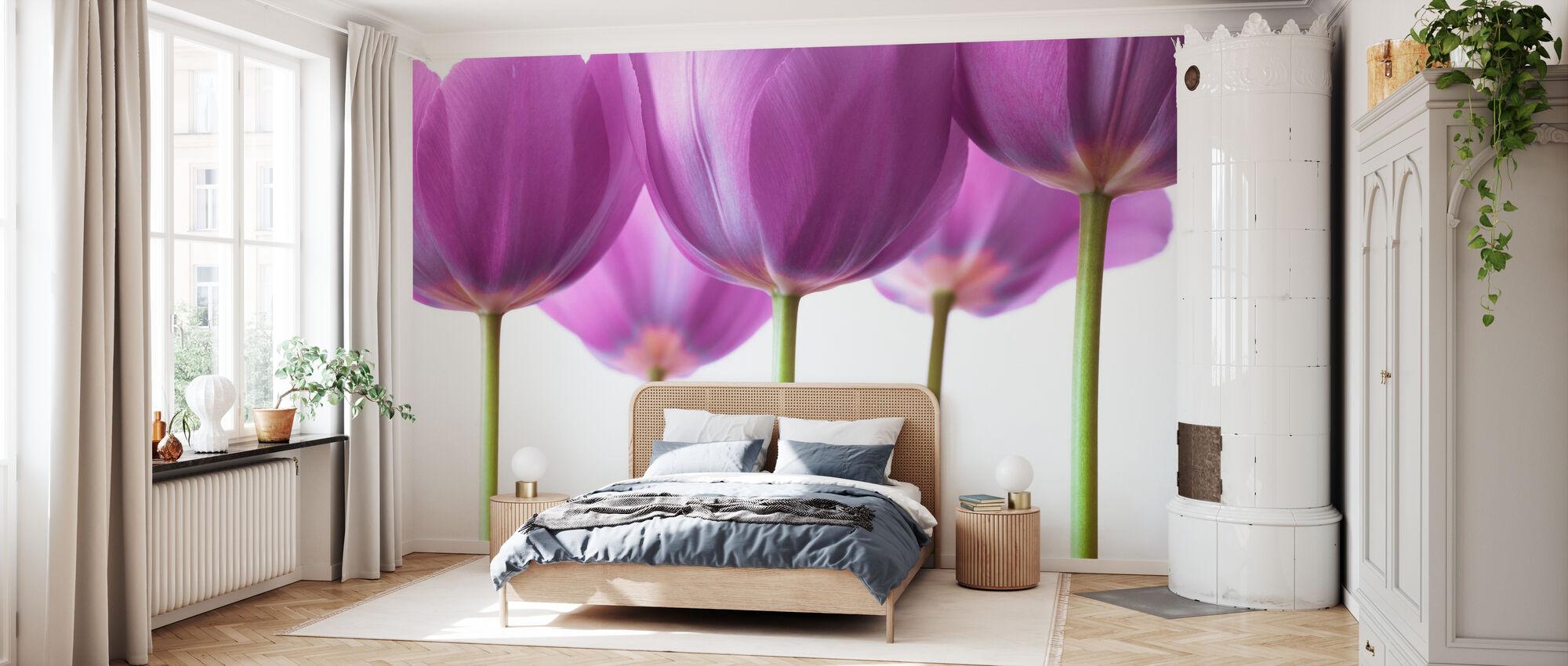 Tulips - Wallpaper - Bedroom