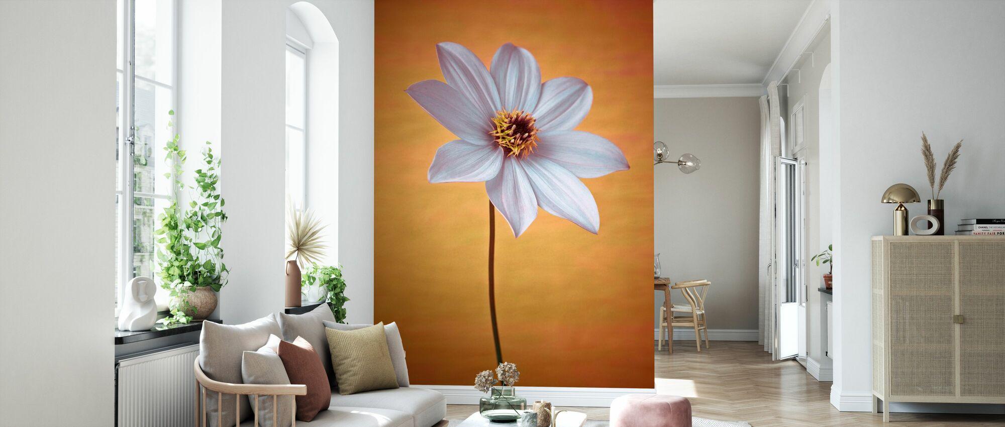 Dahlia Flower - Wallpaper - Living Room