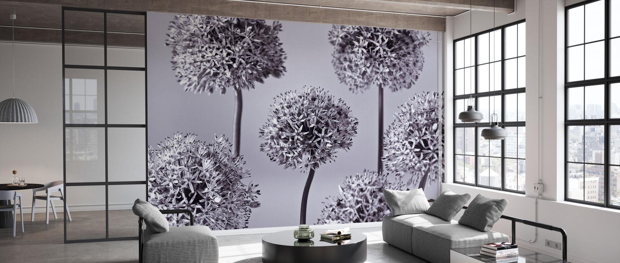 Alliums - Papier peint - Bureau