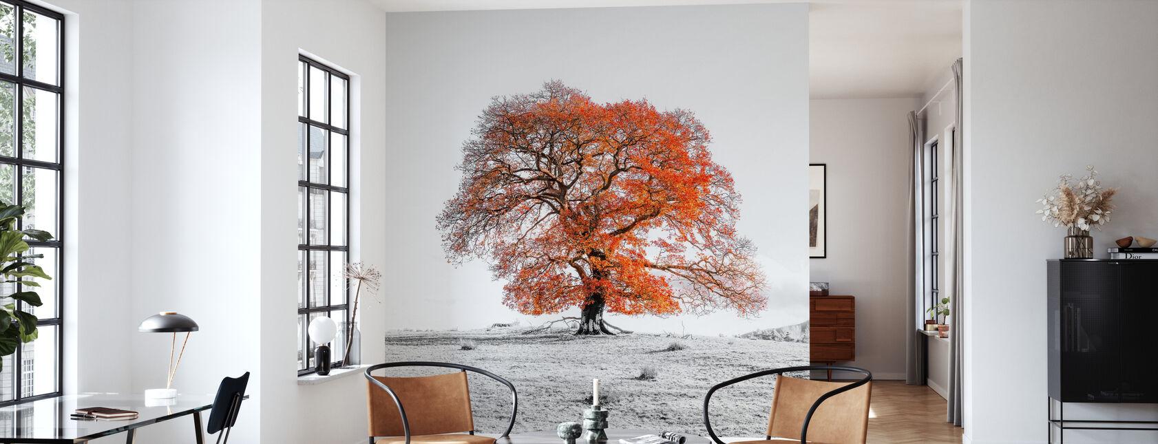 Tree - Wallpaper - Living Room