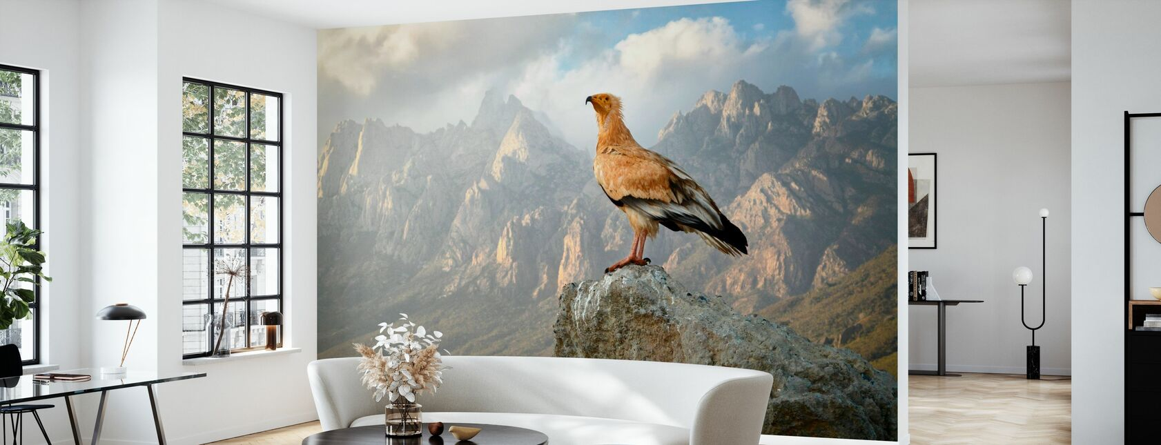 Vulture in Haggeher Mountains - Wallpaper - Living Room