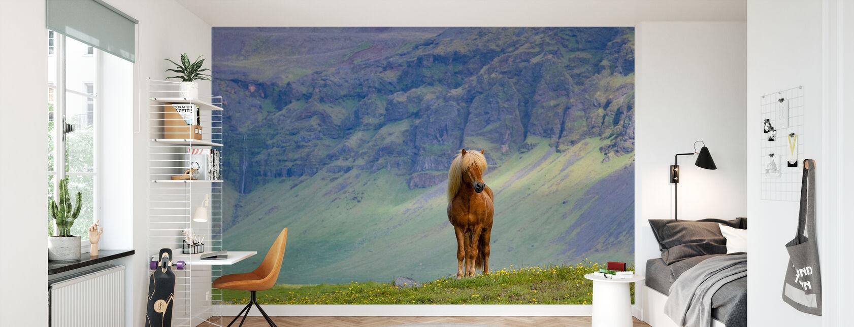 Horse in Grassland - Wallpaper - Kids Room