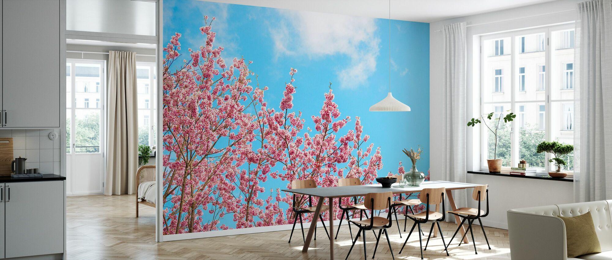 Japan Rising Sun - Cherry Blossoms - Wallpaper - Kitchen
