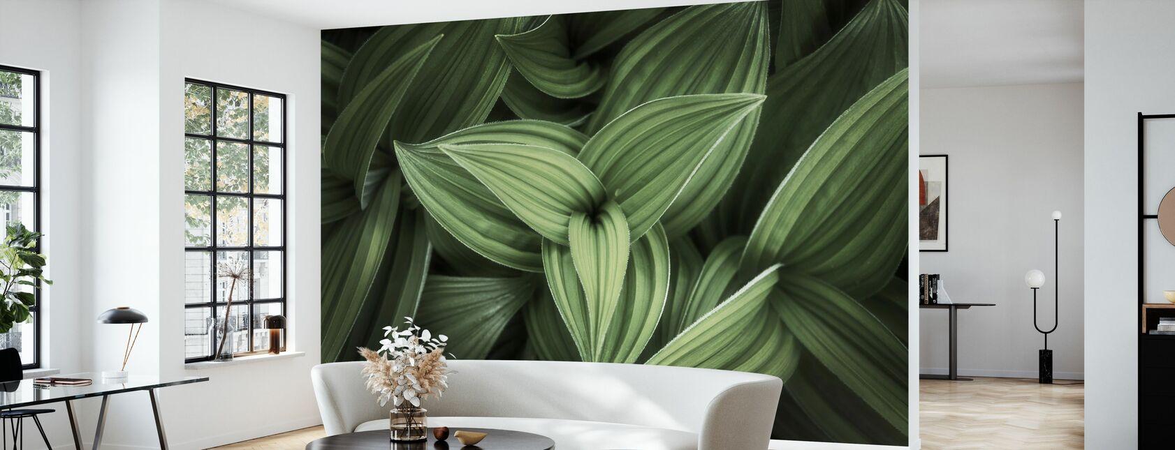 Corn Lily - Wallpaper - Living Room