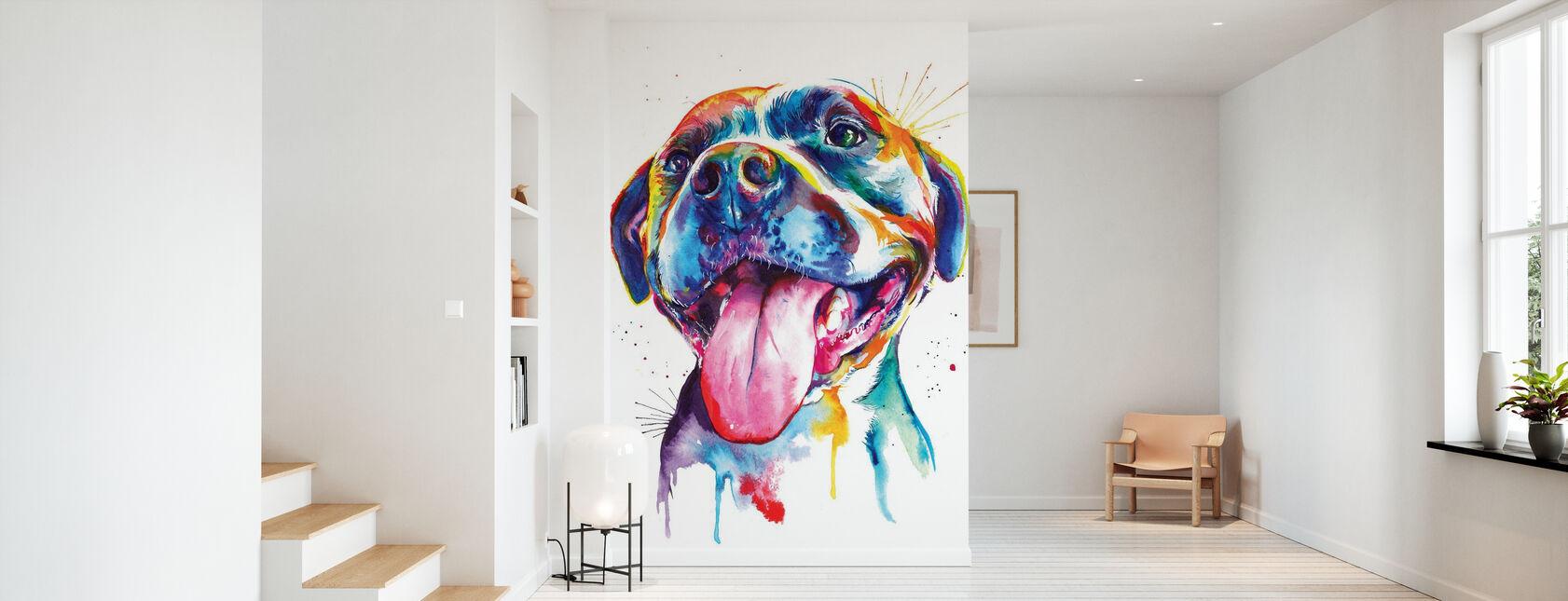 Pitbull - Wallpaper - Hallway