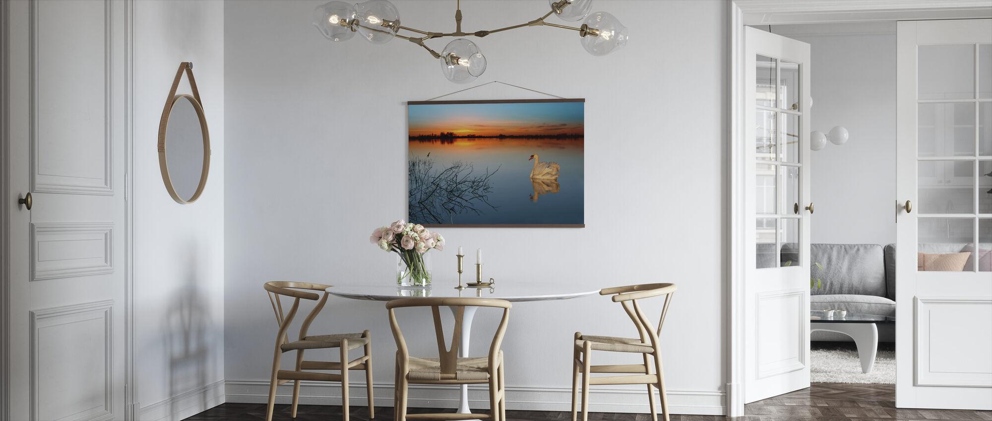 Swan on a lake - Poster - Kitchen