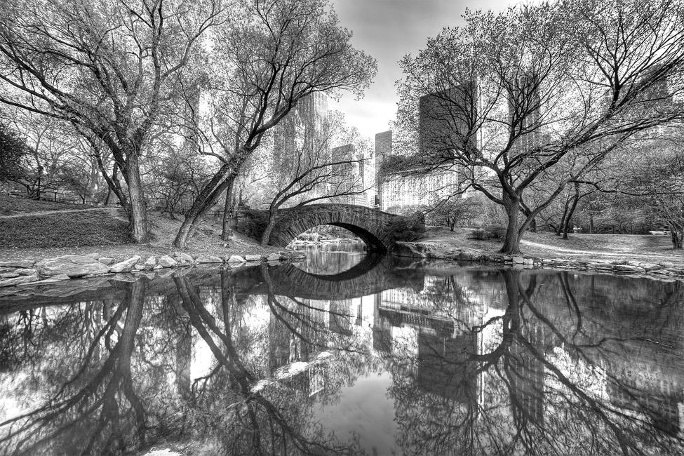 Bridge in Central Park Fototapeter & Tapeter 100 x 100 cm