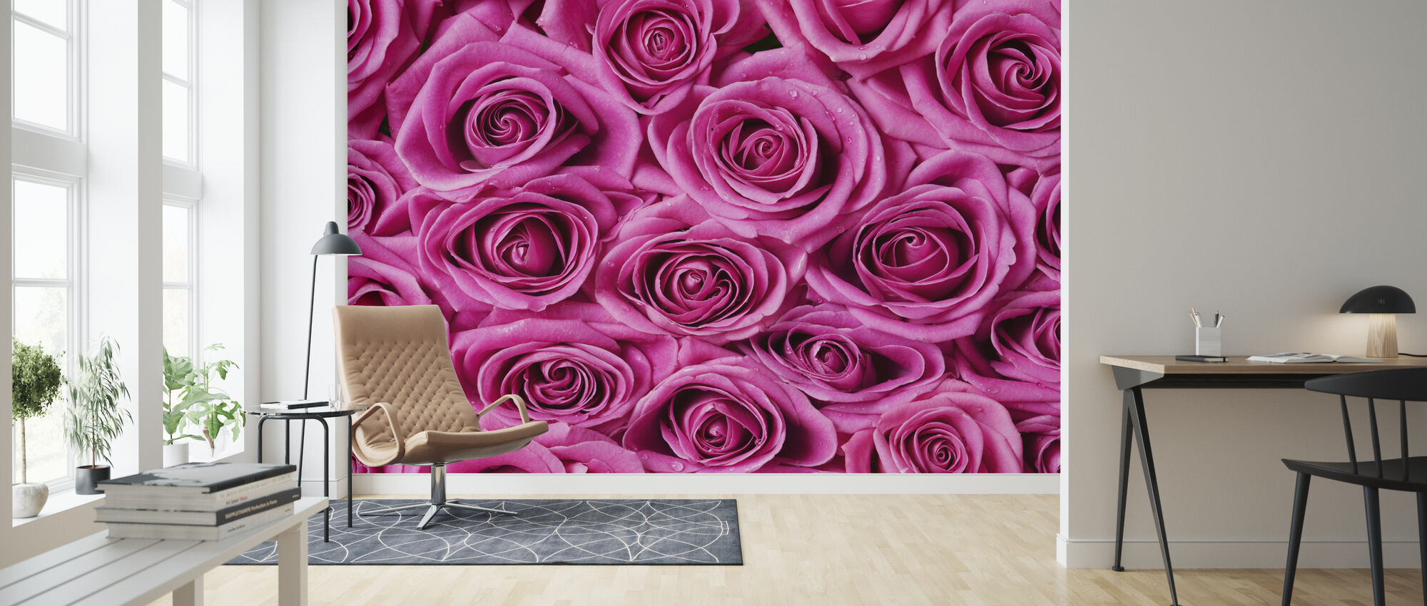 Roses - Pink - Wallpaper - Living Room