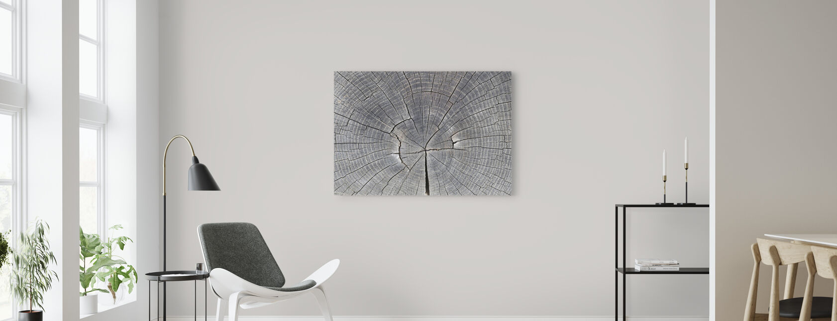Tree Trunk Showing Growth Rings - Canvas print - Living Room