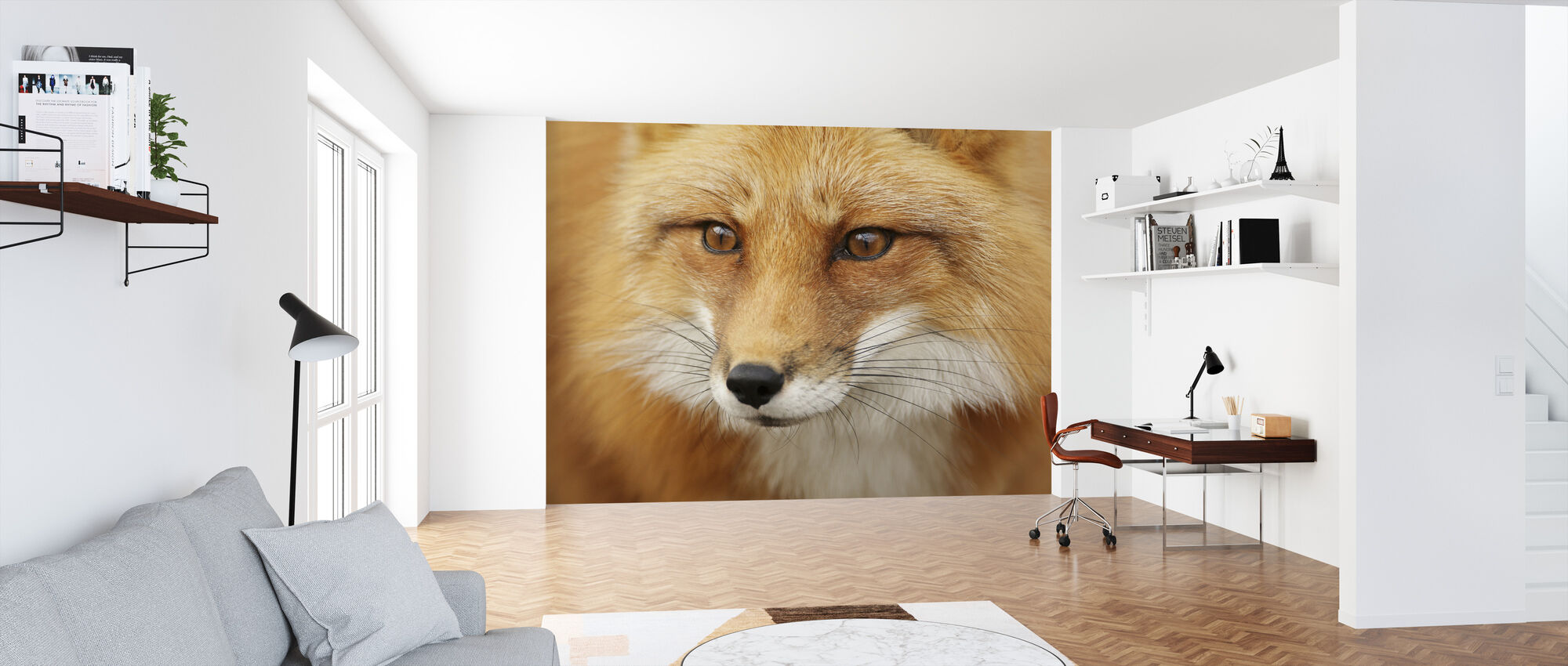 Red Fox - Wallpaper - Office