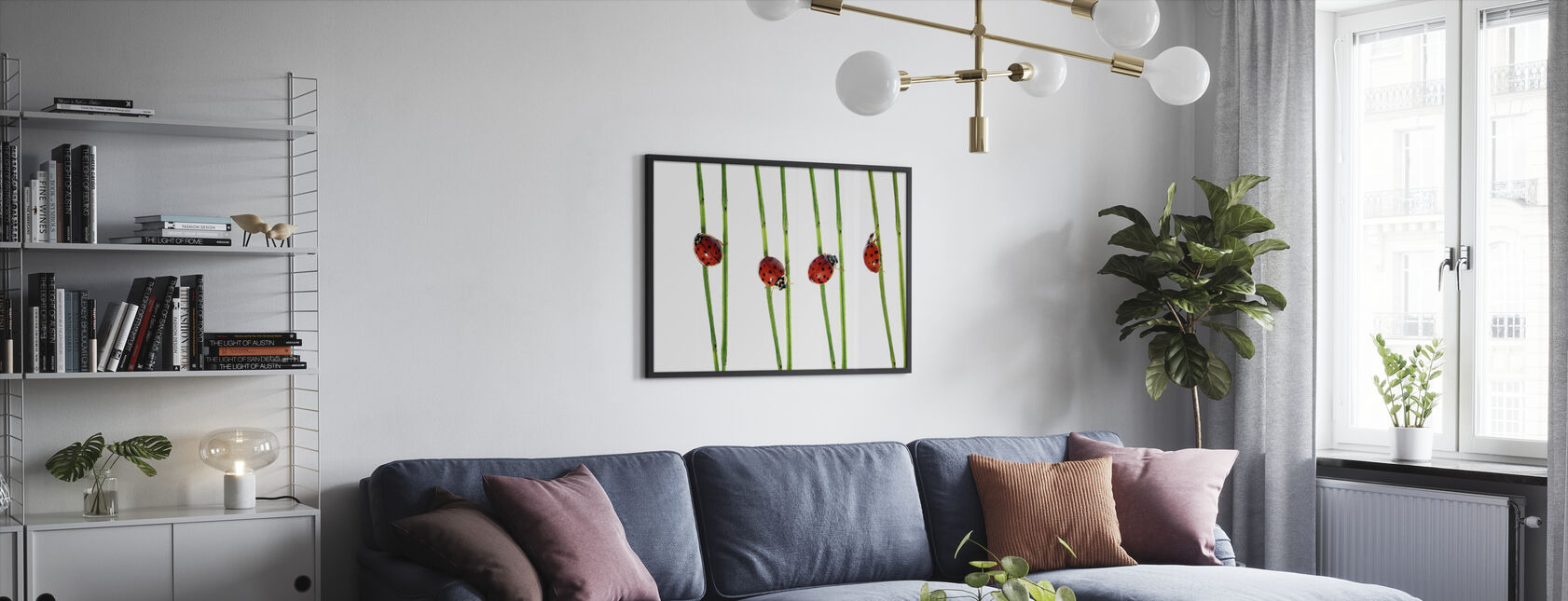 Collection of Lady Bugs - Framed print - Living Room