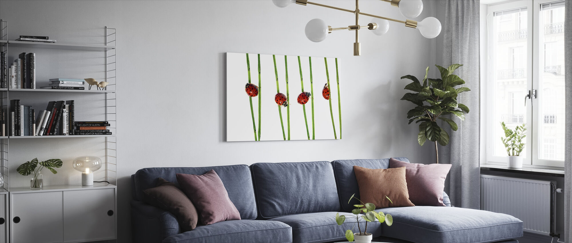 Collection of Lady Bugs - Canvas print - Living Room