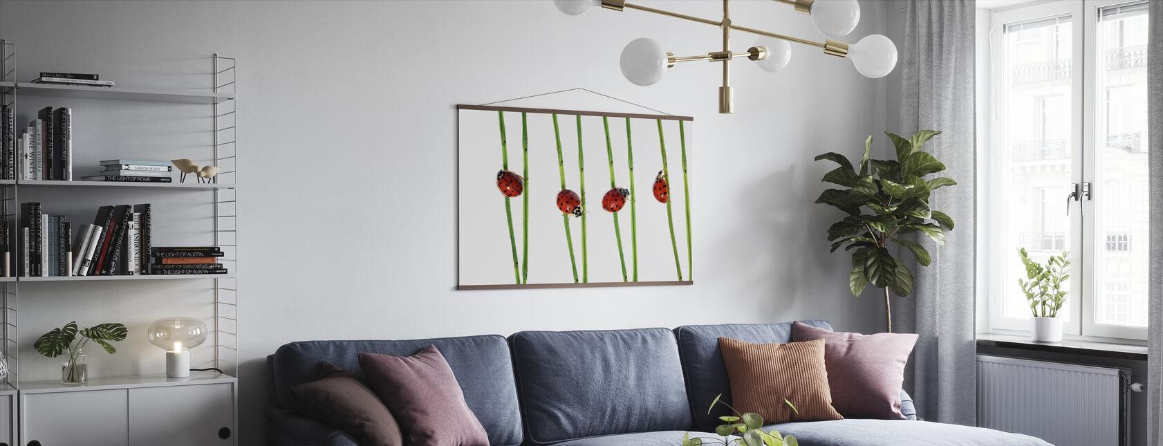 Collection of Lady Bugs - Poster - Living Room