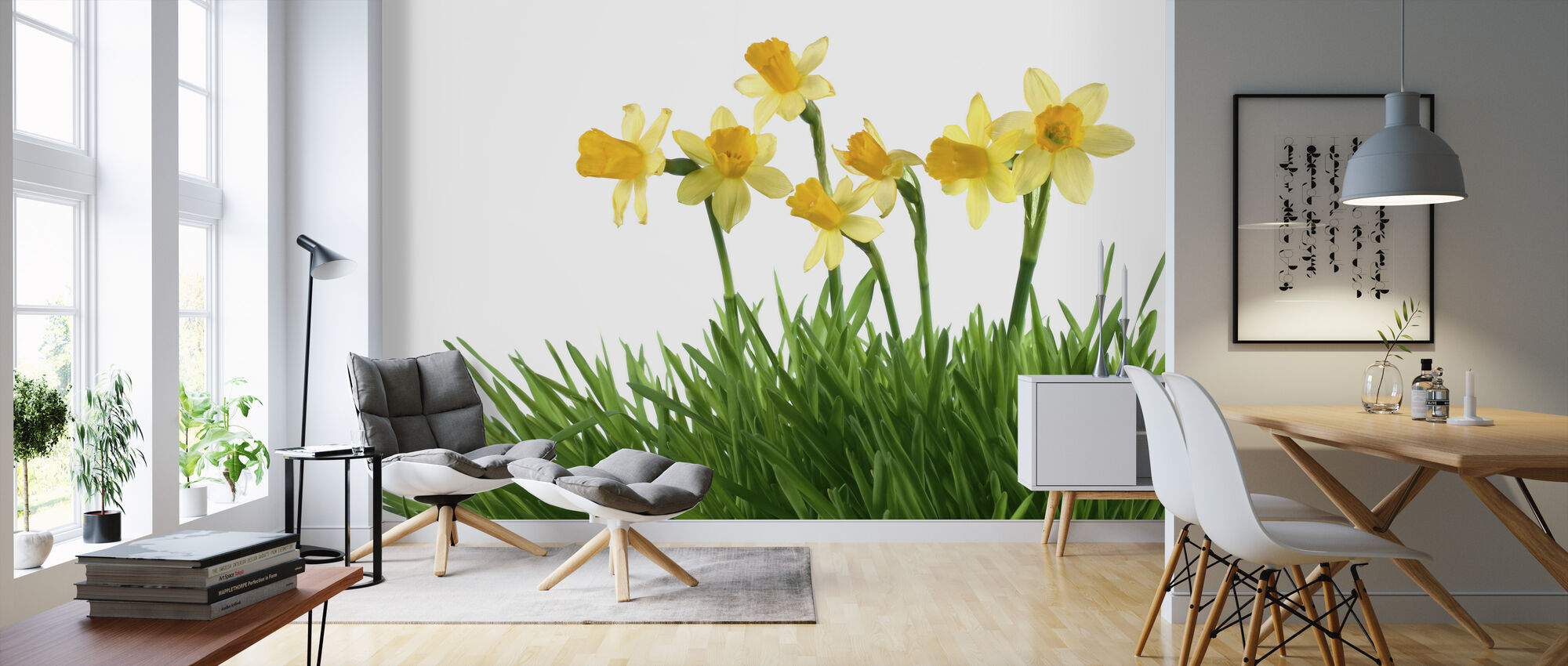 Daffodils in Green Grass - Wallpaper - Living Room