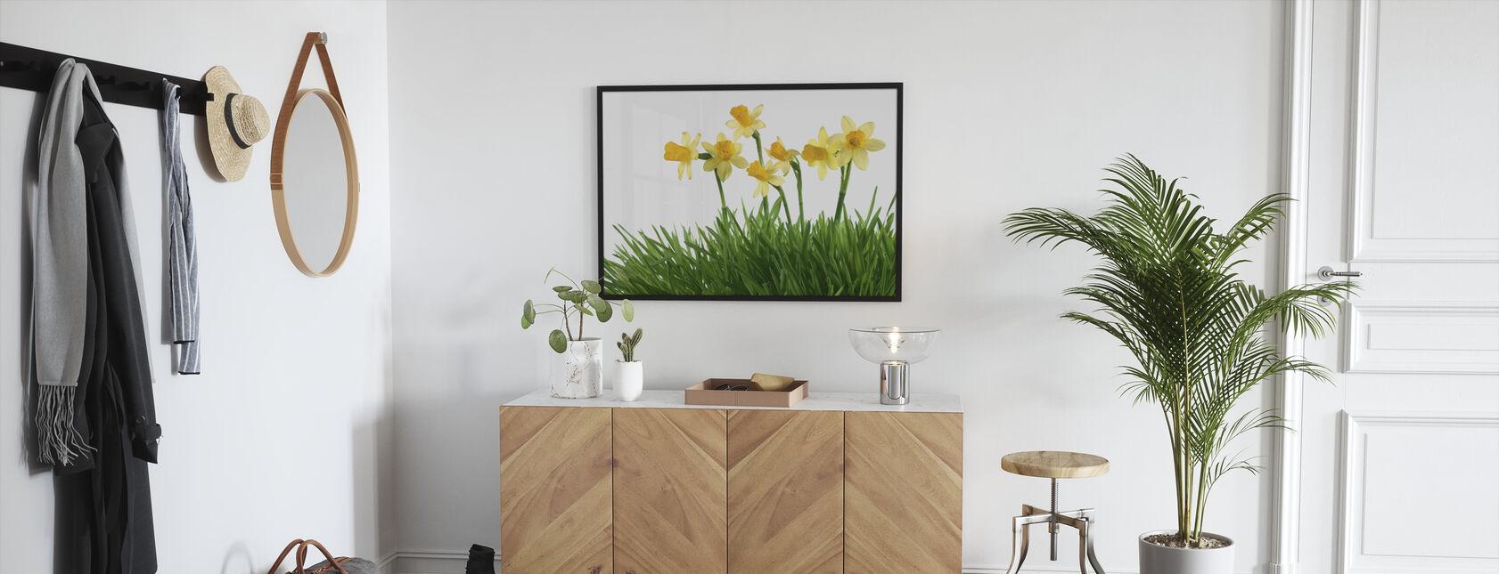 Daffodils in Green Grass - Framed print - Hallway