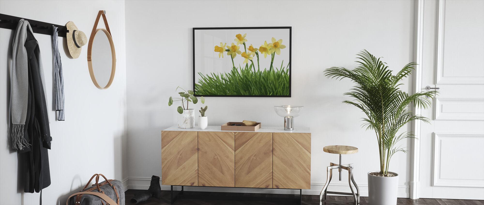 Påskeliljer i grønt gress - Innrammet bilde - Gang