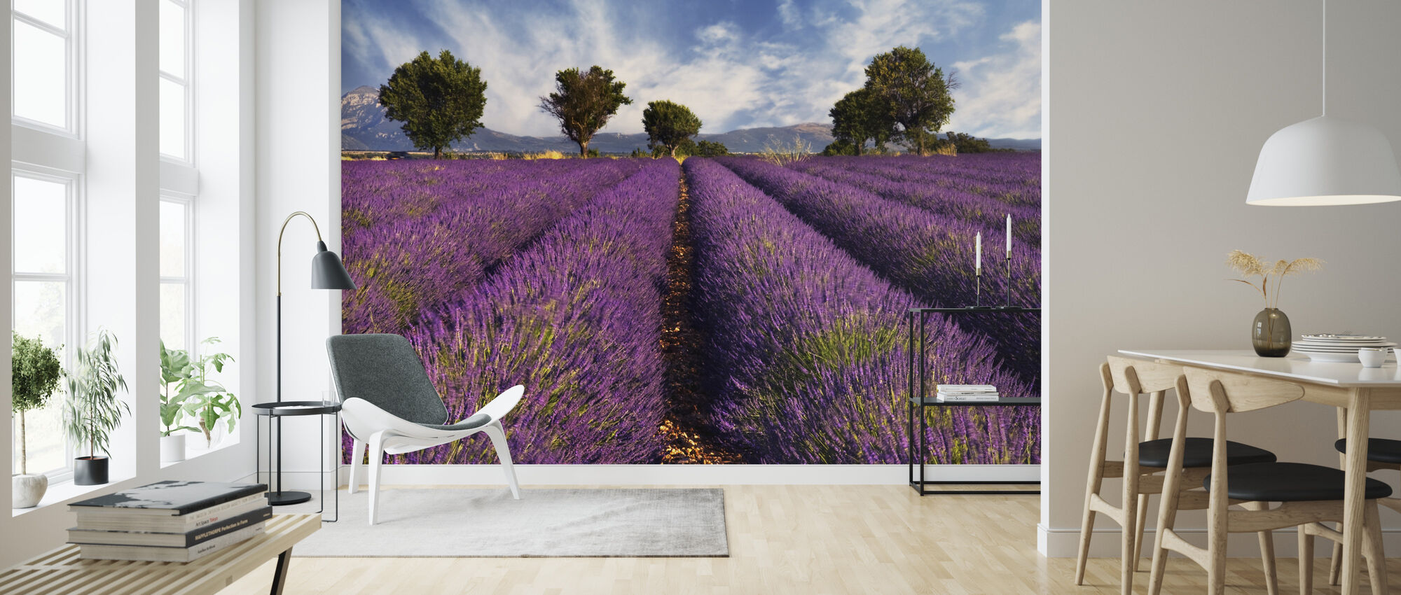 Lavender Field in Provence - Wallpaper - Living Room