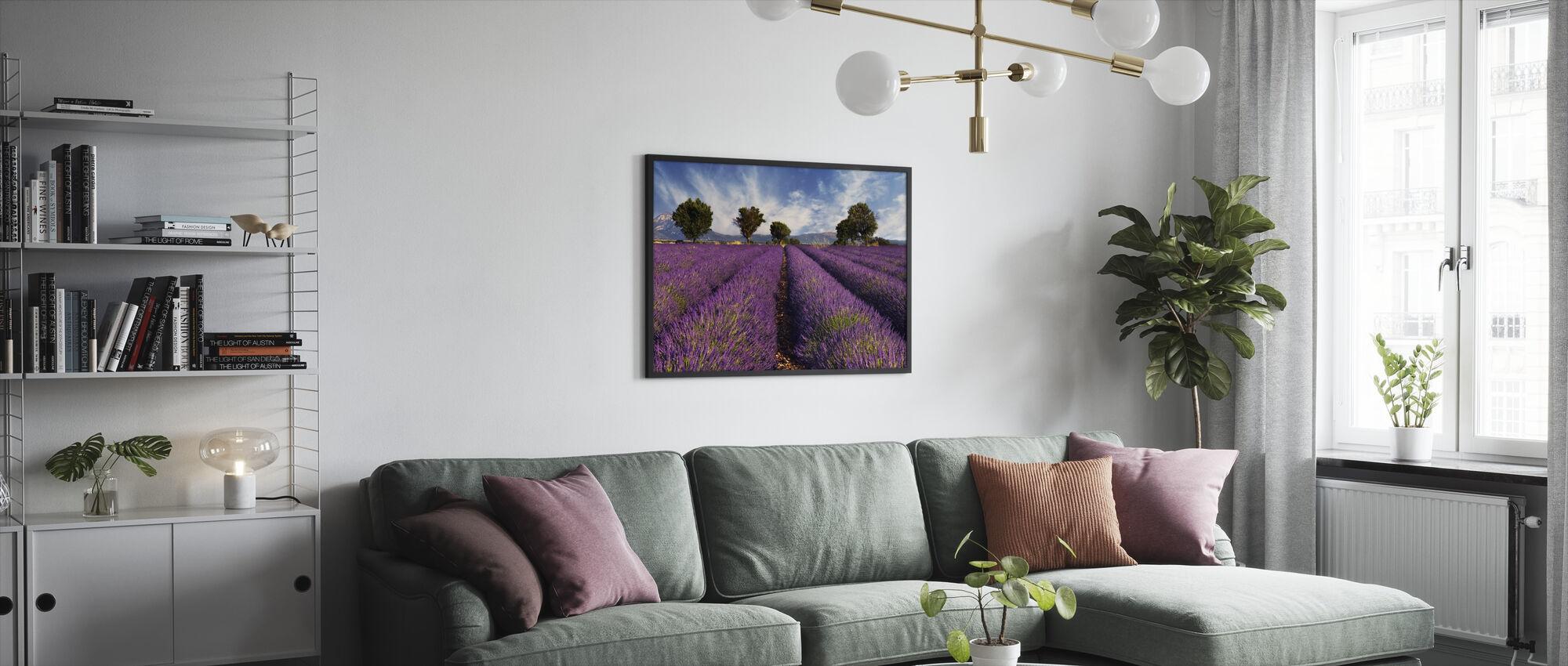 Lavender Field in Provence - Framed print - Living Room