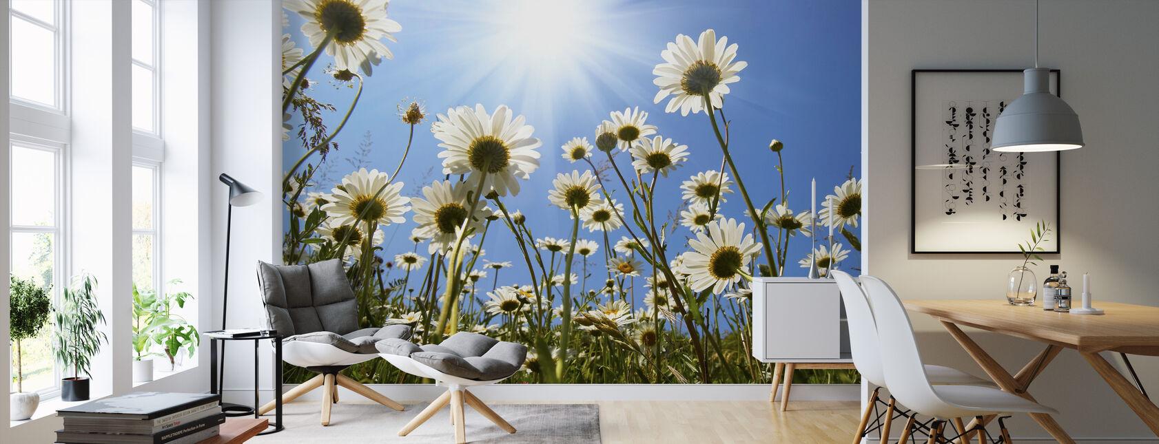 White Daisies - Wallpaper - Living Room