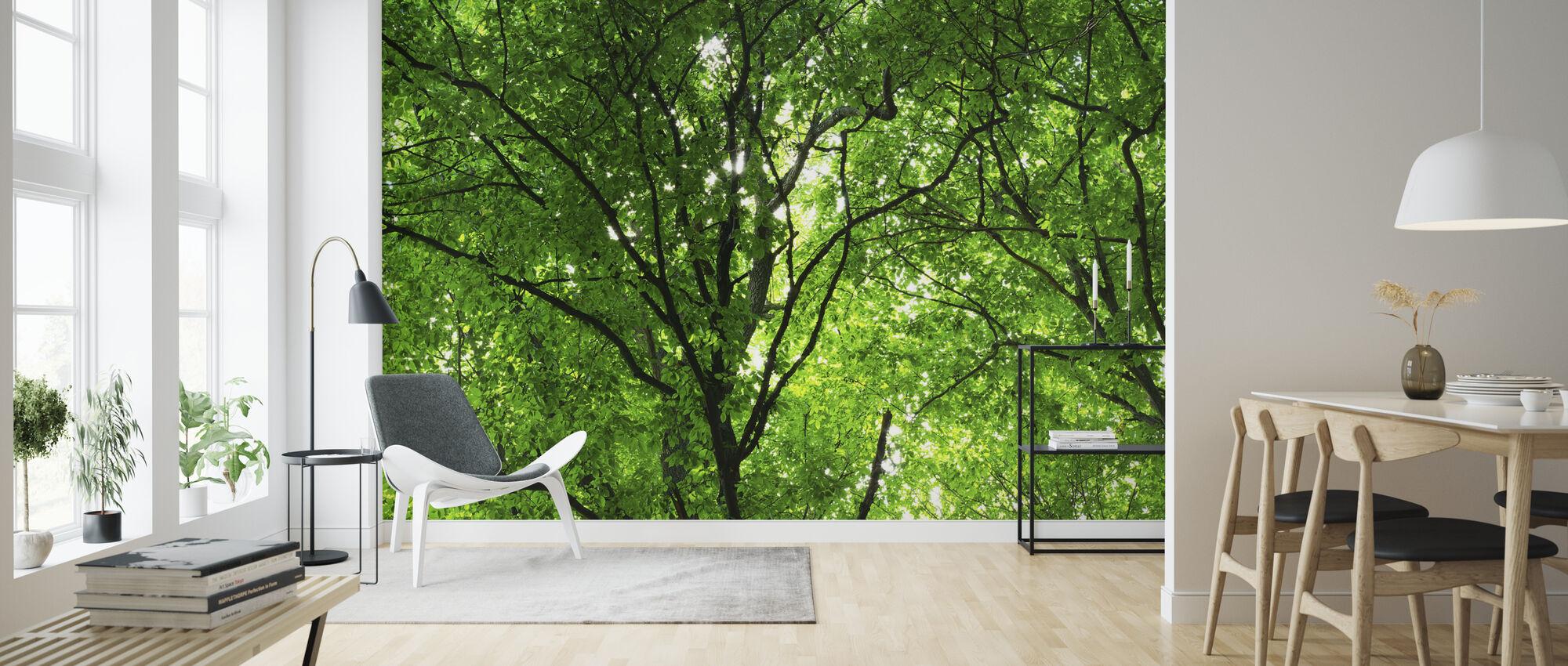 Groene Bos in het voorjaar - Behang - Woonkamer