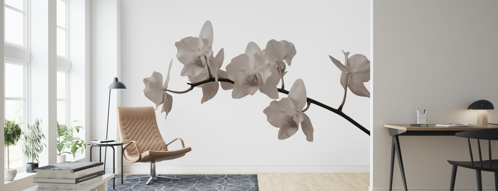 White Orchid Stem Sepia - Wallpaper - Living Room