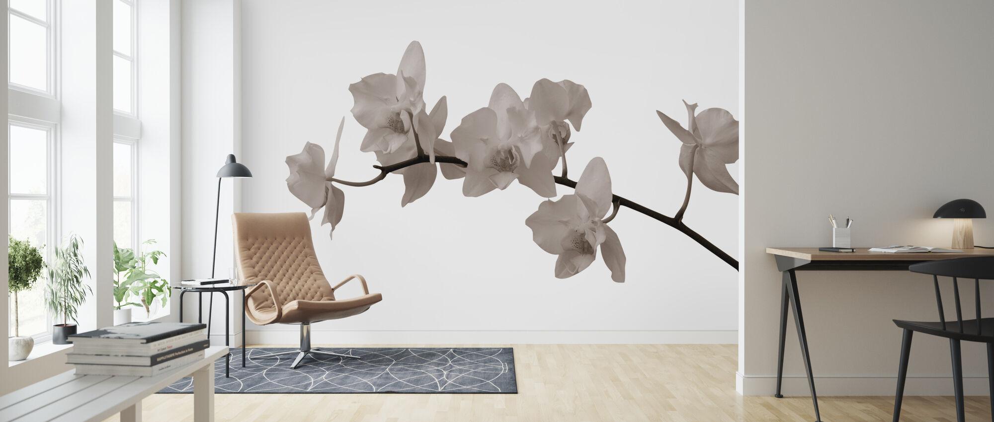 White Orchid Stem Sepia - Wallpaper - Living Room