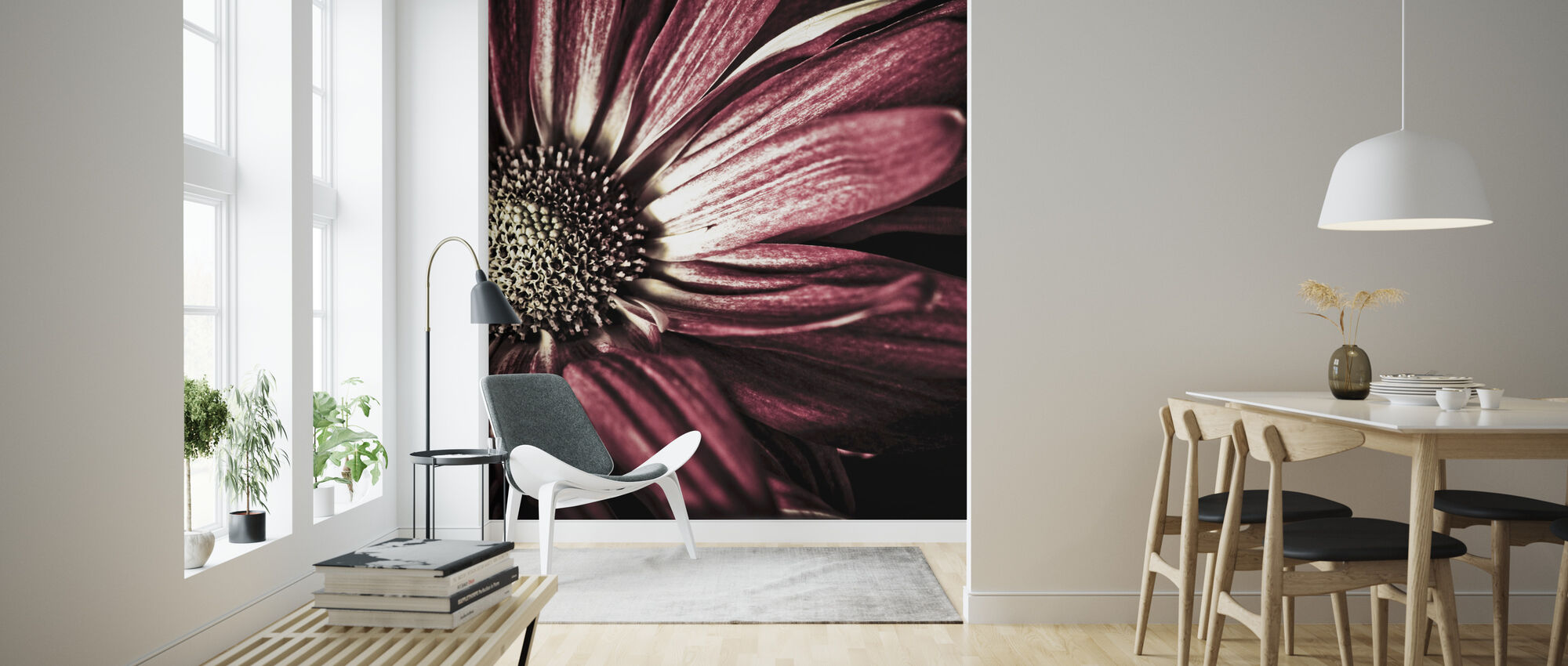 Dark Daisy - Wallpaper - Living Room