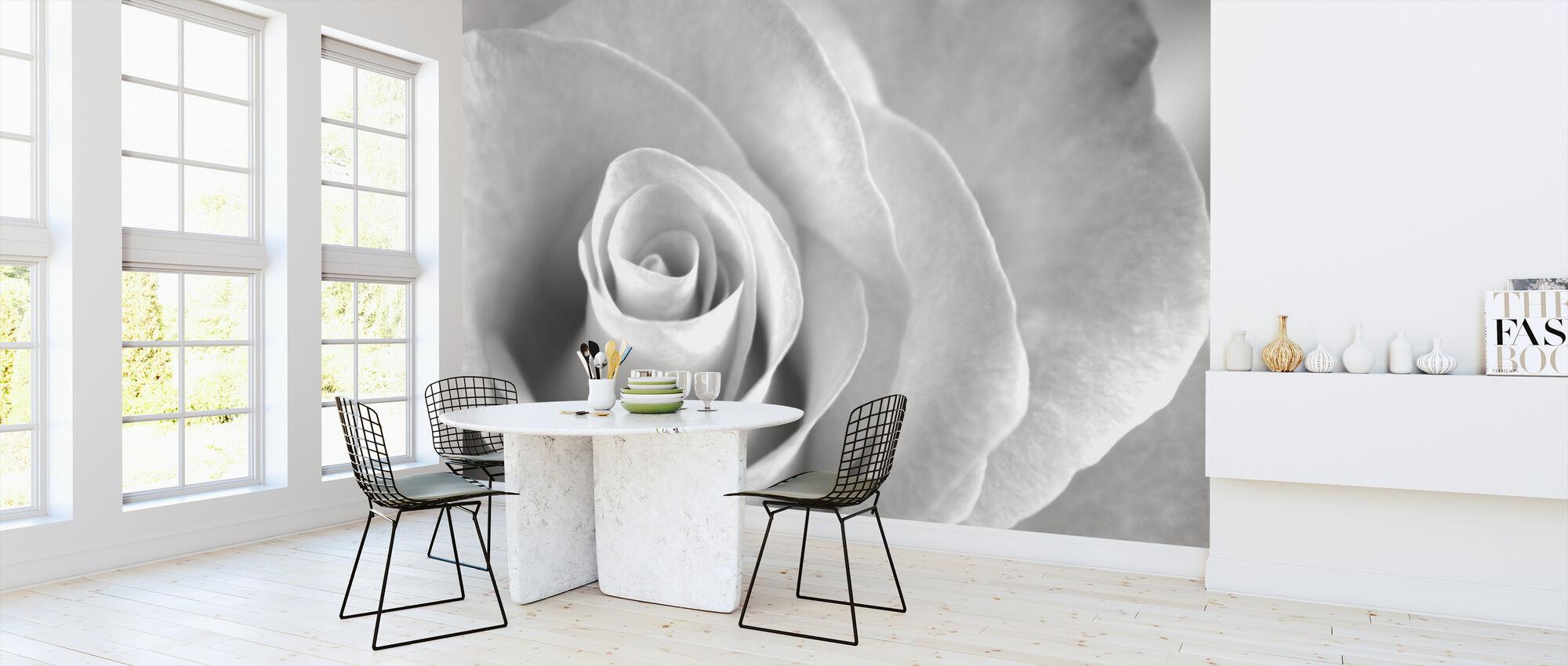Soft Rose - b/w - Wallpaper - Kitchen