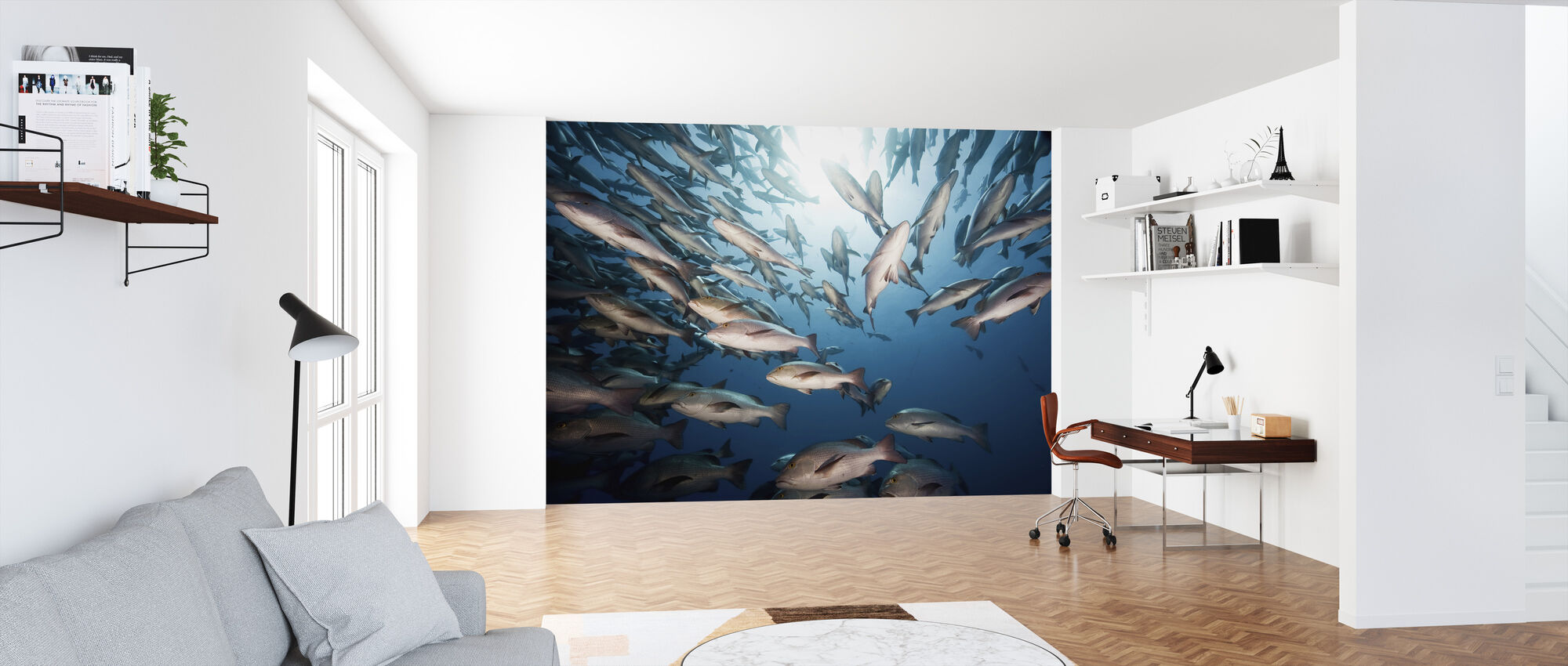 Mangrove Snappers - Wallpaper - Office