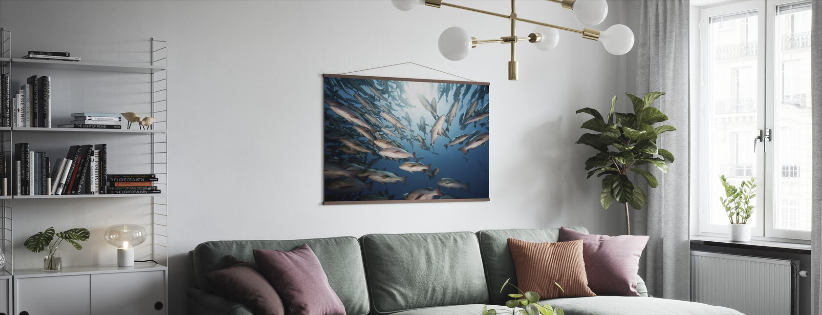 Mangrove Snappers - Poster - Living Room