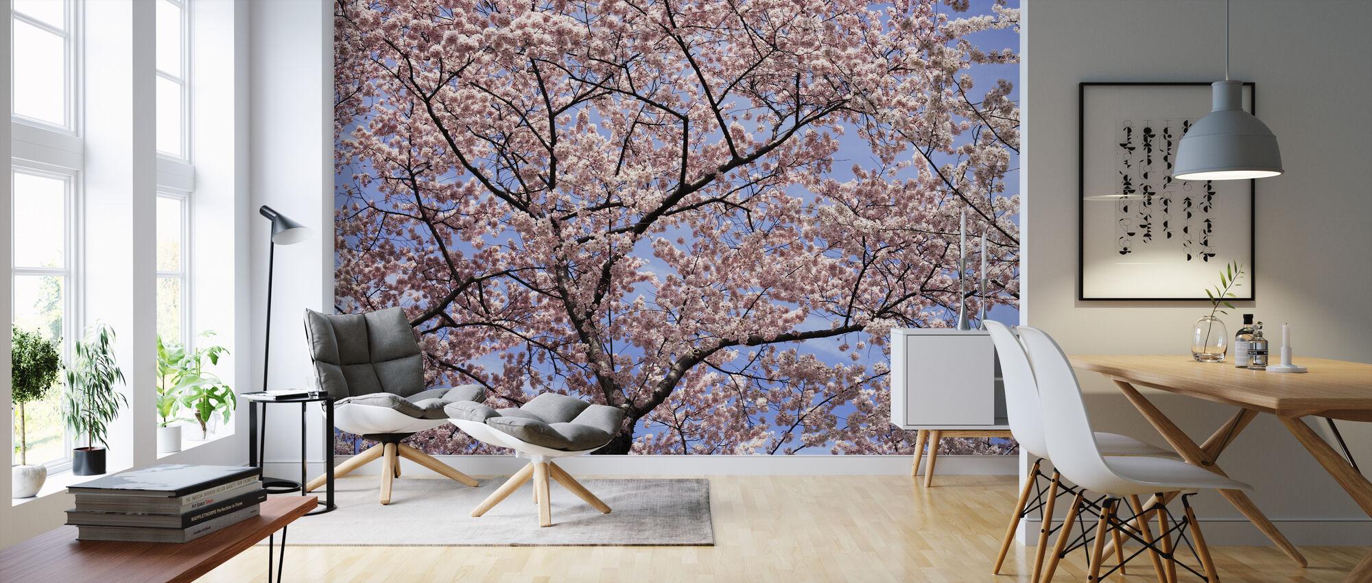 Blooming Cherry Tree - Wallpaper - Living Room