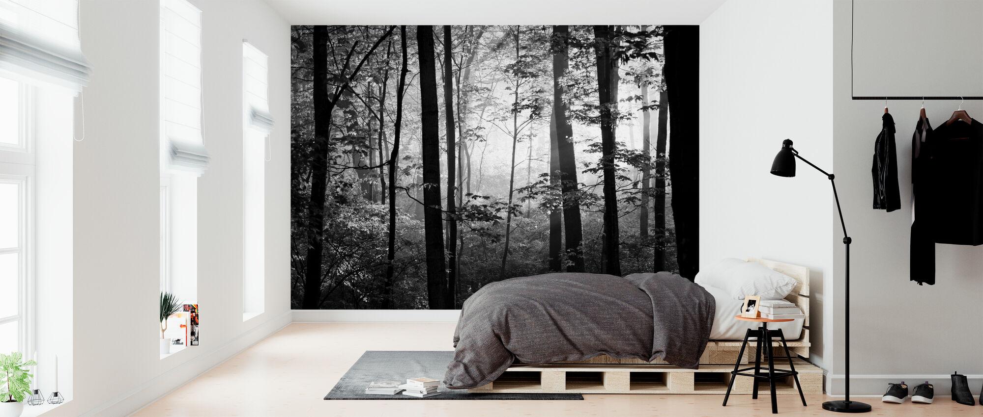 Early Morning - b/w - Wallpaper - Bedroom