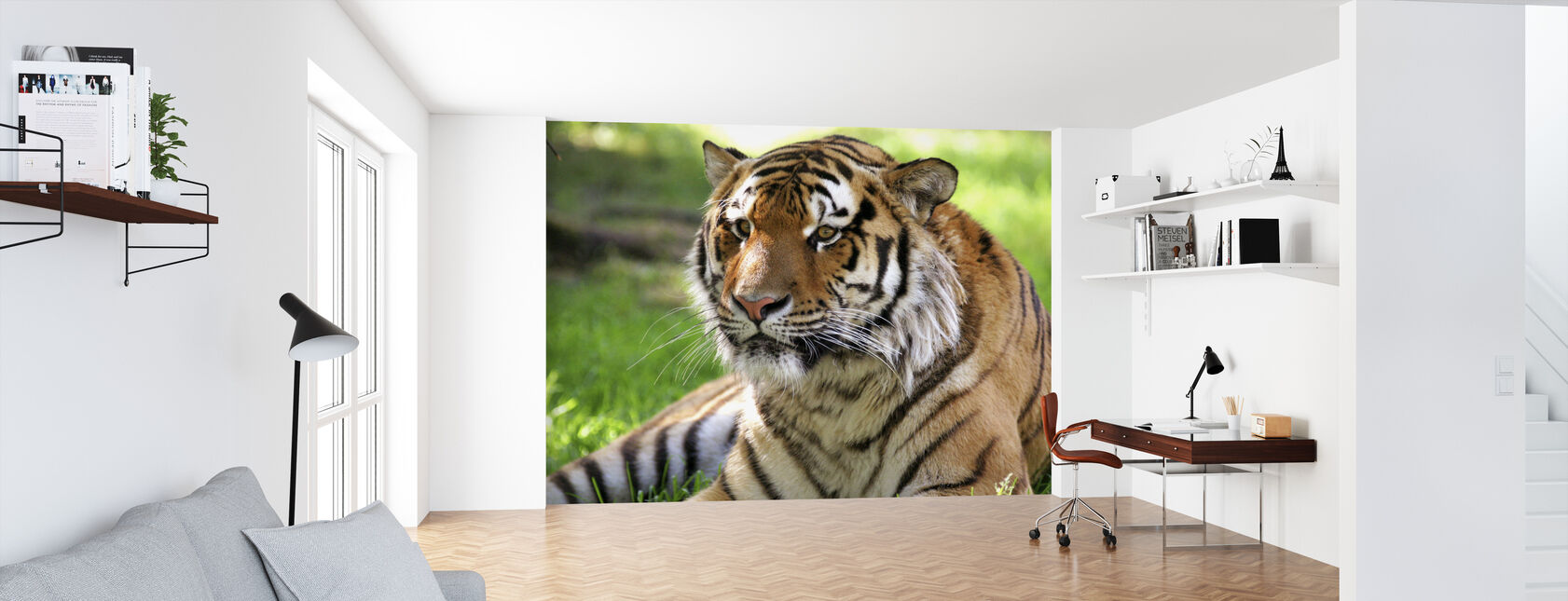 Tigre - Papier peint - Bureau