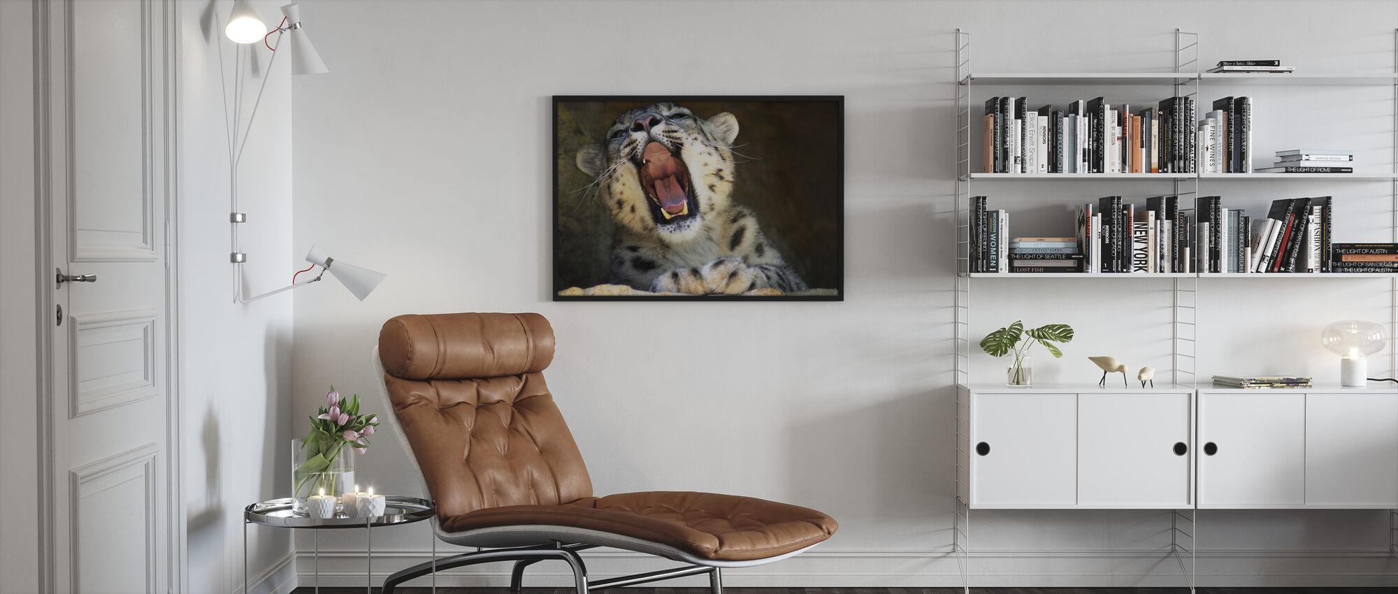 Väsynyt kissa - Kehystetty kuva - Olohuone