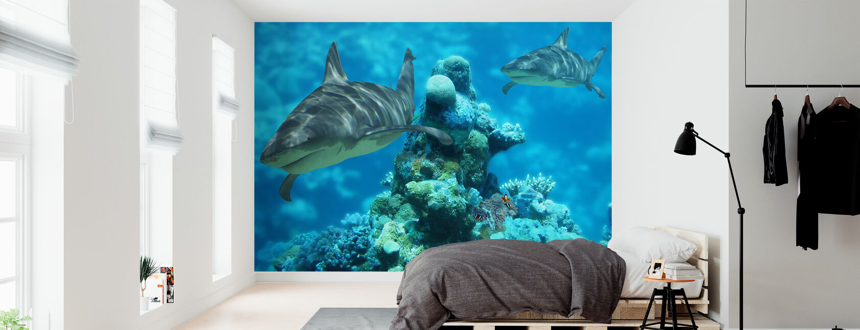 Shark Bommie - Wallpaper - Bedroom
