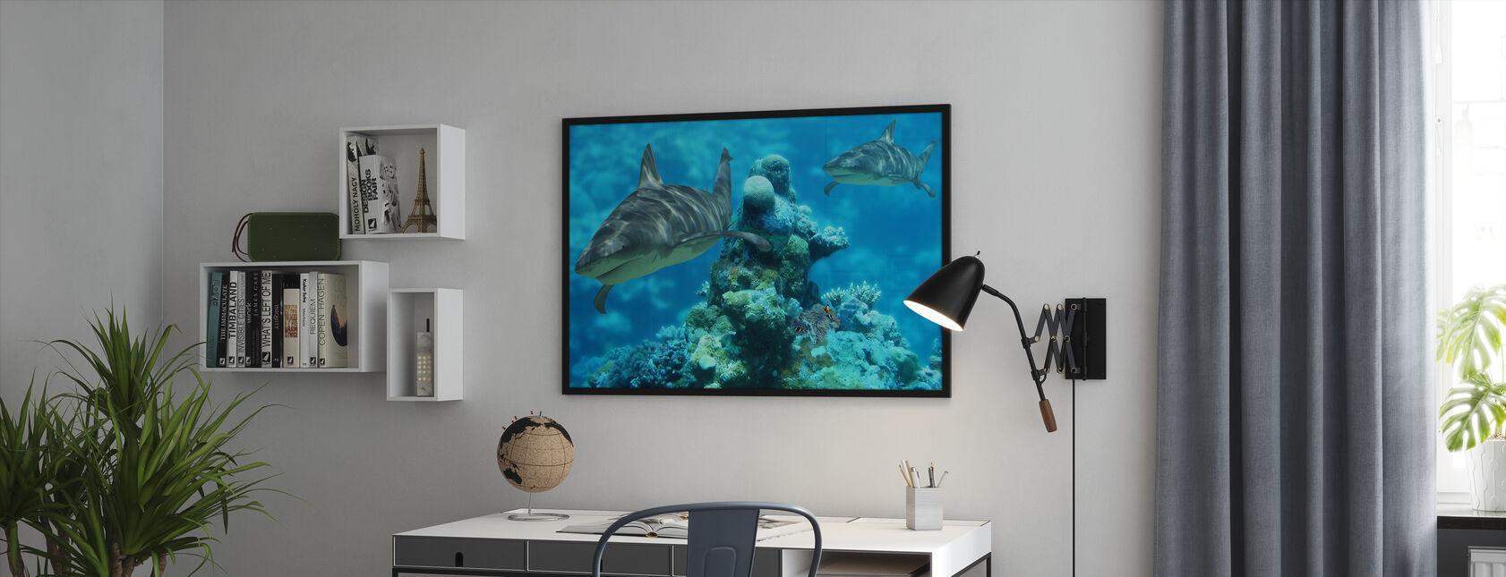Shark Bommie - Framed print - Office